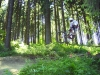 20050618_training_winterberg_07
